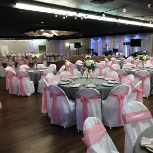 Chair Covers, Sashes & Bands